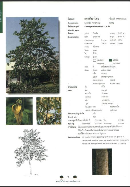 4299 Ebook คู่มือการปลูกต้นไม้ขนาดต่างๆ