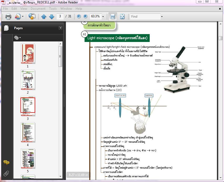 4966 Ebook ชีววิทยา ม.ปลาย (.pdf)