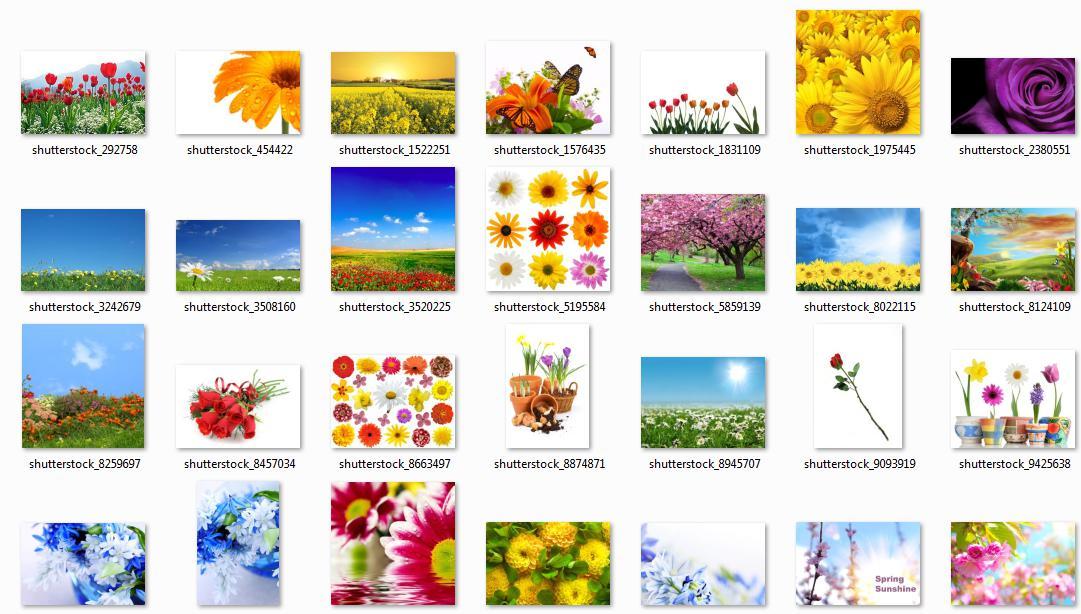 5308 รูปภาพ Nature ความละเอียดสูง หลายพันภาพ