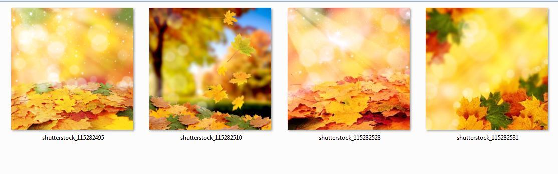 5309 รูปภาพ Textures and Backgrounds หลายร้อยภาพ